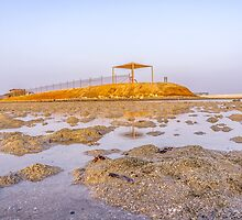 BEACH WATCH TOWER by likbatonboot