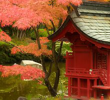 Little Red Pagoda by Bryan Peterson