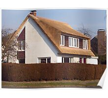 My House -new thatched roof Poster