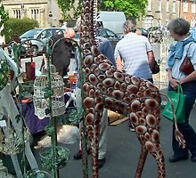 Giraffe Seen In Bridport. Dorset by lynn carter