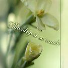 Springtime Thankyou (sublime lime watercolour) by picketty