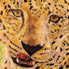 Leopard by Lydia Cafarella