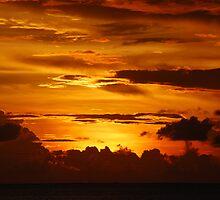 BURNT ORANGE SUNSET by Carol Barona