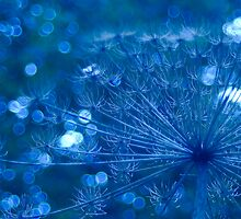 Sparkling Blue Imagination by steppeland