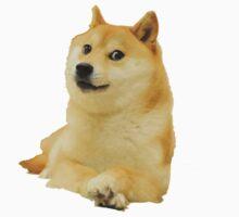 Doge shibe meme classic Kids Clothes