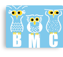 BMC Owls - Light Blue Canvas Print