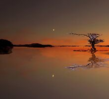 Tequila Moon by Paul Gibbons