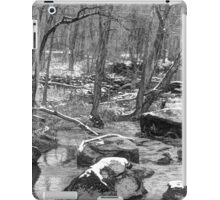 B&W Unami Creek in Winter Grays iPad Case/Skin
