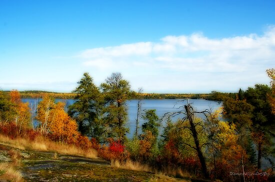 Last Day at Caddy Lake by Vickie Emms