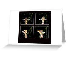 Baby Giraffe Composite Greeting Card