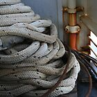 Nautical Knots by Cherie Baxter