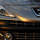 peugeot on sunset by mark3500