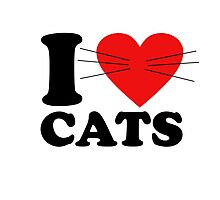 Funny - I Love Cats with moustache Photographic Print