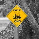 Bee Crossing by Patricia Montgomery