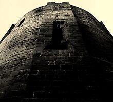 A fortification  by Mark Mitrofaniuk