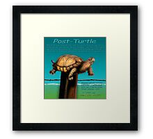 Post Turtle Framed Print