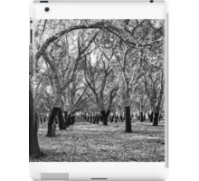 Oak Forest in Black and White iPad Case/Skin