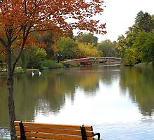 Victoria Park by Debbie West