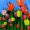 """Tulips"" original  springtime floral painting by Michael Arnold"
