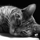 Lazy Afternoon by Maria Bonnier-Perez
