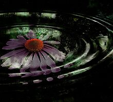 The Liquid Flower VIII by EbelArt
