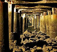 Beneath the Pier by Tony Steinberg