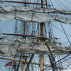 Rigging - James Craig by Bev Woodman