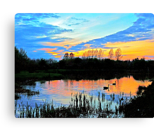 Sunset silhouettes Canvas Print