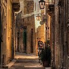 An Alley in Zejtun.  by Anthony Vella