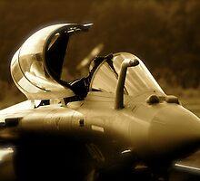 Dassault Rafale by Mike Rivett