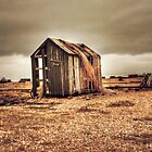 Shed On The Sands by Dave Godden