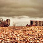 Dungeness Low View by Dave Godden