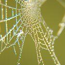 Beaded Silk by ChereeCheree