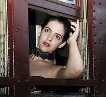 Through The Window by Elaine Harriott
