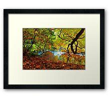 Perception of Autumn Framed Print
