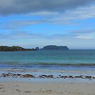 Beach Scene by BlueMoonRose