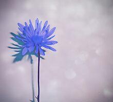 Touch of Shimmer Blue Flower Art by Adri Turner