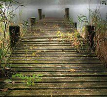 Loch Ard Boardwalk by Linda  Morrison