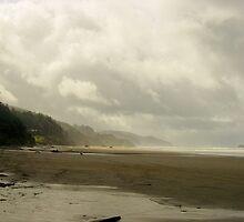 Arcadia Beach by Edith Farrell