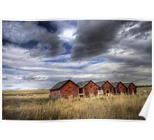 Five Red Barns Poster