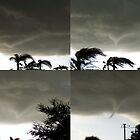 Tornado Collage by Virginia N. Fred
