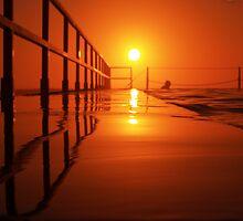 Sunrise Swim {c} by Nick Ford