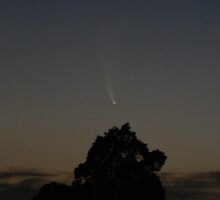 Comet McNaught 2007 (over Lansdowne NSW) by louisegreen