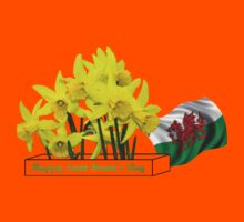 Happy Saint David's Day Kids Clothes