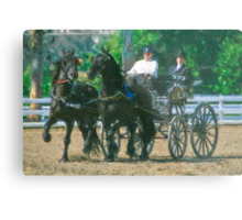 Impasto-stylized photo of a woman driving an Andalusian horse-drawn carriage in dressage competition at Del Mar Horsepark in Del Mar, CA US. Metal Print