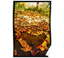 Leaves Of Love Poster