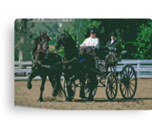 Impasto-stylized photo of a woman driving an Andalusian horse-drawn carriage in dressage competition at Del Mar Horsepark in Del Mar, CA US. Canvas Print