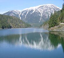 Diablo Lake by Edith Farrell