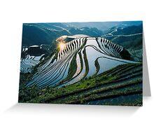 Rice Terraces 2(Banaue,Phil.) Greeting Card