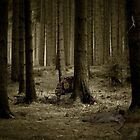 Don't go into the woods by circuscat